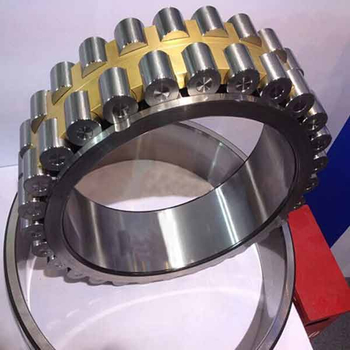 Two double row cylindrical roller bearing